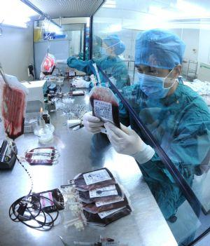 Clinic research for umbilical cord blood stem cell